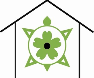 Springhouse Turtle Eats logo green tirtle with green flower on its back inside the black outline of a house